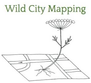 Logo Wild City Mapping